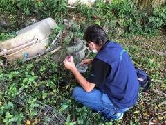Dengue: Palhoça força-tarefa fiscaliza ferros-velhos