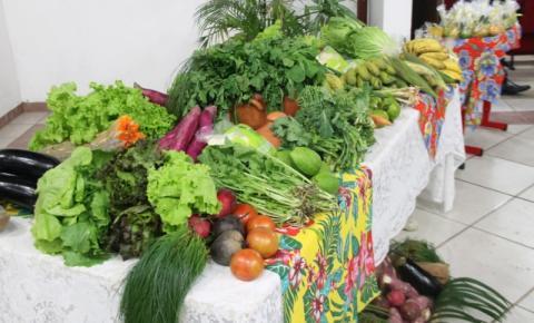 Alimentos produzidos pela agricultura familiar serão destinados a entidades socioassistenciais de Biguaçu