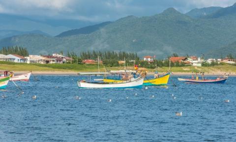 Safra da tainha começa no próximo sábado em Palhoça; pescadores comemoram