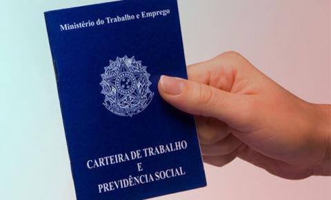 Olha a vaga! Analista de Importação e Exportação para Itajaí, com salário de R$ 2.700