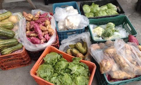 São José aposta no incentivo à alimentação e à agricultura familiar