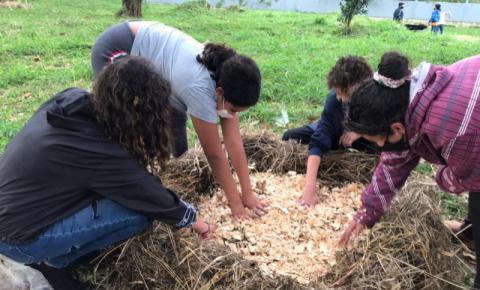 Escolas da rede municipal de São José apostam na compostagem